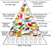 established healthy diet guidelines
