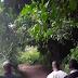 Badoo: Police Arrest Baale, Three Others