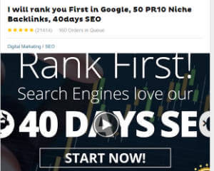 Top ranked SEO Gig Seller at fiverr-300x240