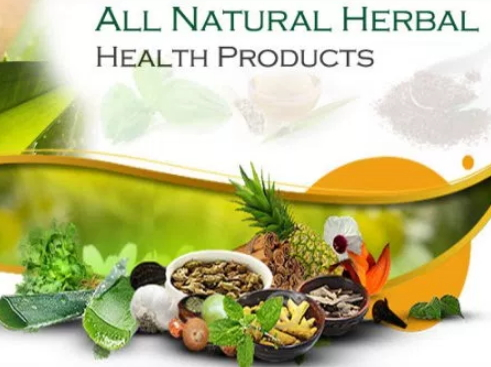 natural healing herbs foods