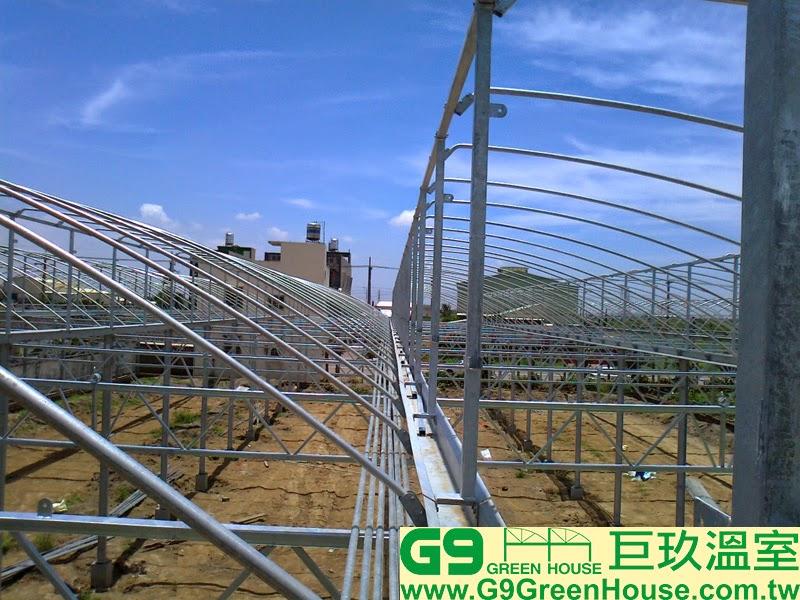 15.鋸齒鋼骨加強型溫室,水槽結構每二米固定一支高1
