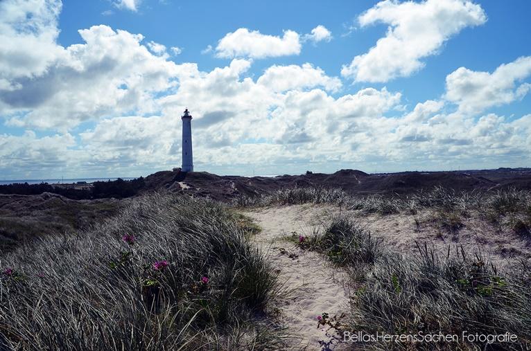 Dänemark Leuchtturm