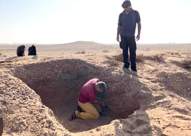 French archaeological mission discovers Neolithic artefacts in Umm Al Quwain