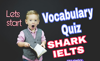 vocabulary quiz to improve english
