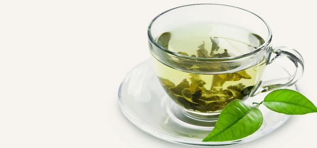 Green Tea Helps You Lose Weight Naturally Must Read
