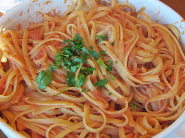 Red Pasta Sauce Recipe Vodka Pasta Sauce Recipe