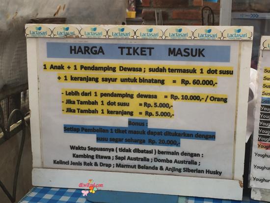 HTM lactasari PVJ,HTM memberi minum susu sapi di Bandung