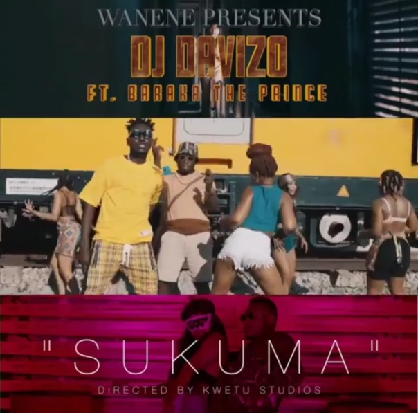 Selekta Davizo Ft. Baraka The Prince - Sukuma