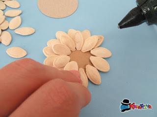 fiore di semi di zucca