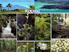 Sejarah terjadinya gunung rinjani di Lombok