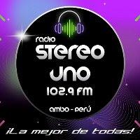 radio stereo uno Ambo