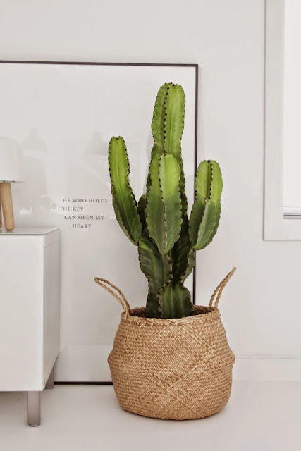 Decorar con cestas naturales y plantas