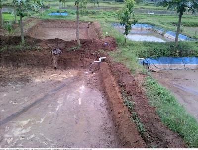 Kolam Tanah Untuk Budidaya