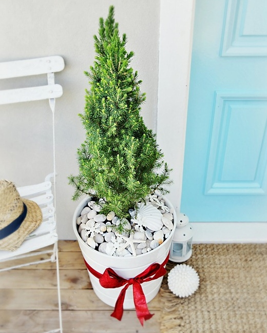 Small Outdoor Beach Christmas Tree in Bucket