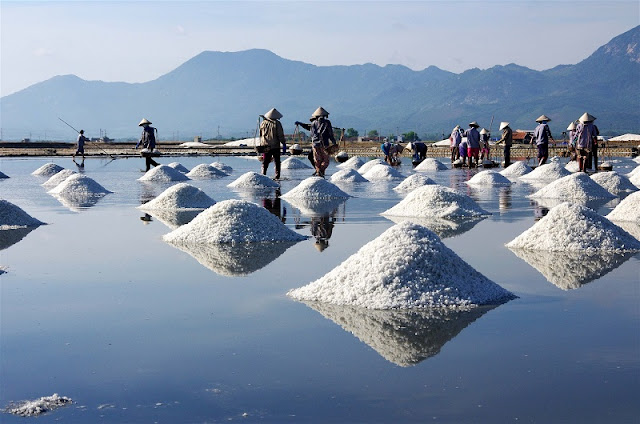 Immense salt fields boast their stunning beauty in scorching sun 5