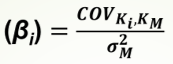 CAPM e o Custo de Capital Próprio - 5