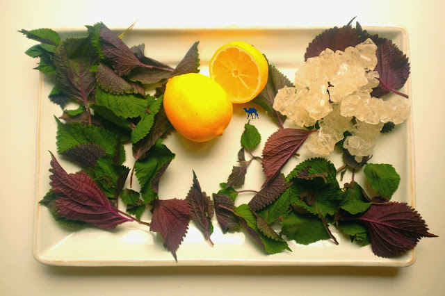Le Chameau Bleu - Ingredients Jus de Shiso Rouge