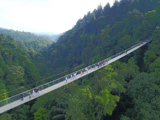 Jembatan Gantung Situ Gunung Sukabumi Jawa Barat