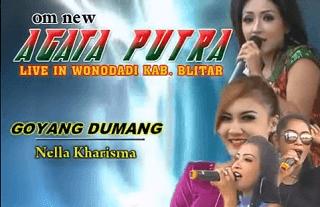 Lirik Lagu Goyang Dumang - Nella kharisma