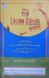 mti broadway junior collection lion king
