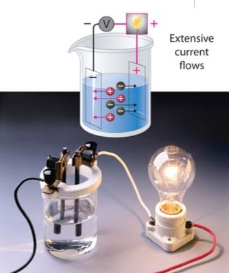 Pengertian Jenis Dan Contoh Larutan Elektrolit Info Kimia
