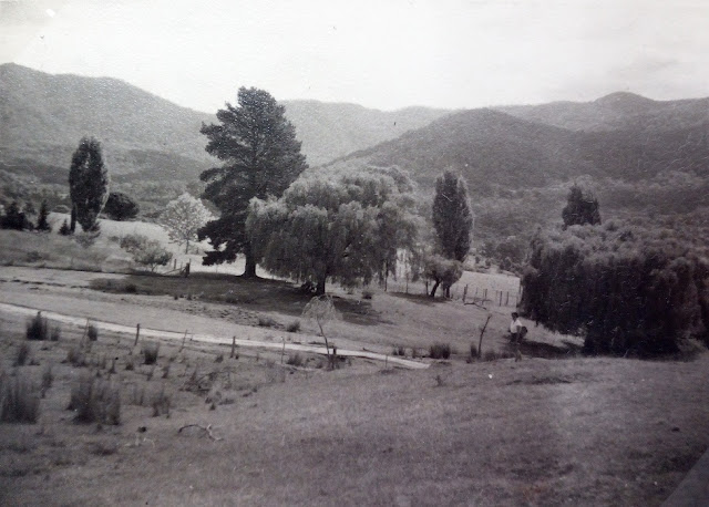 Tidbinbilla valley and mountains, 1955