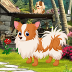 Games4King Cute Puppy Rescue Walkthrough