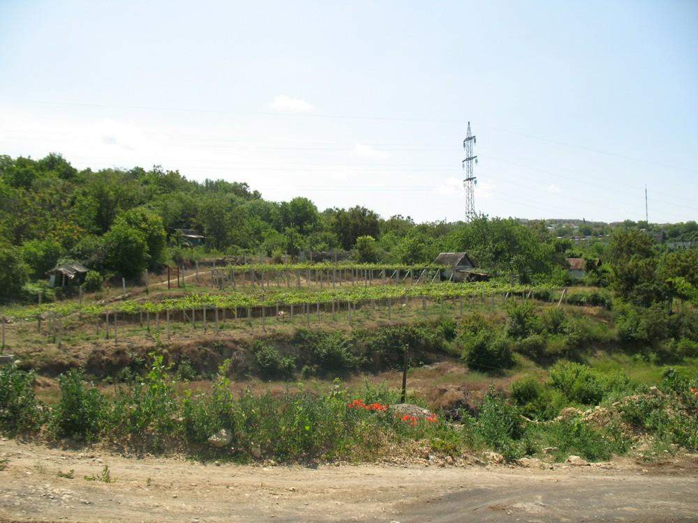 Стандарты выгребной ямы Севастополь
