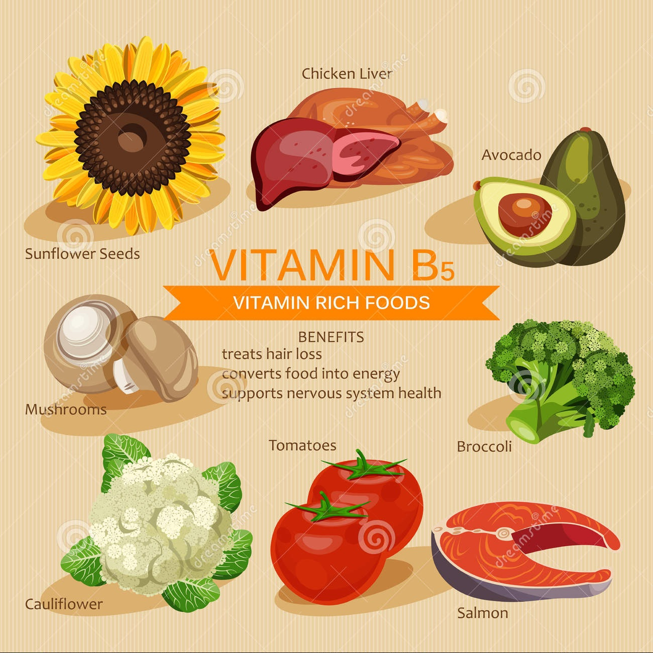 vitamins-minerals-foods-illustration-vector-set-vitamin-rich-foods-vitamin-b-broccoli-chicken-liver-avocado-sunflowe-65188682.jpg