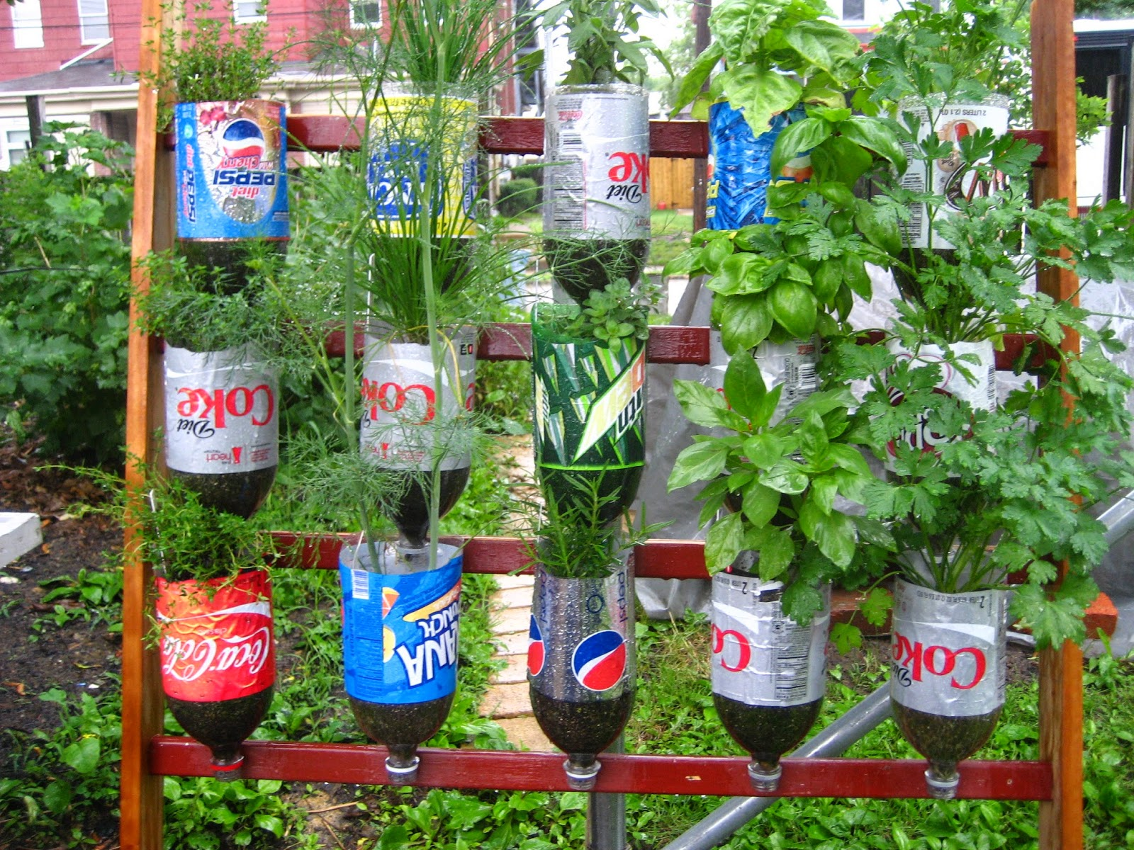 Diy Garden Ideas: All Bottled Up