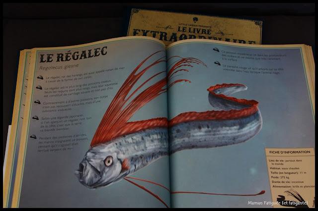 livre extraordinaire animaux océan