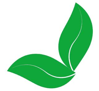 Single hijau daun 2020