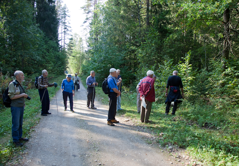 bc5eb186a56 Nõmme Vanameeste Klubi: Sügisene jalgsimatk Kõrvemaal