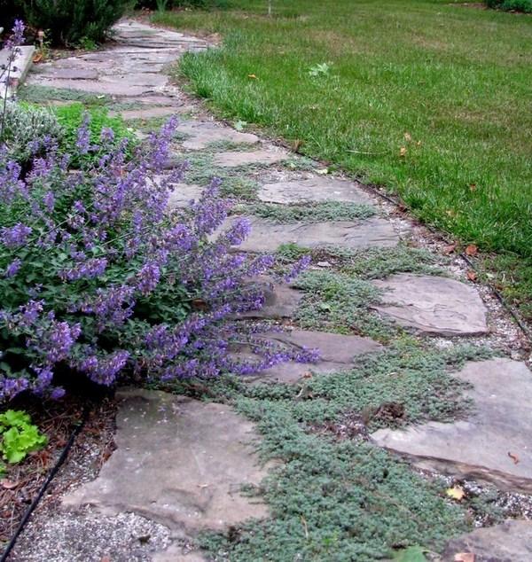 Garden Paths A Cool Exterior