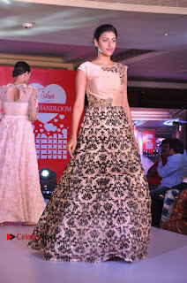 South Indian Celebrities Pos at Love For Handloom Collection Fashion Show  0112.jpg
