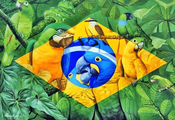 Ecologia-Brasil
