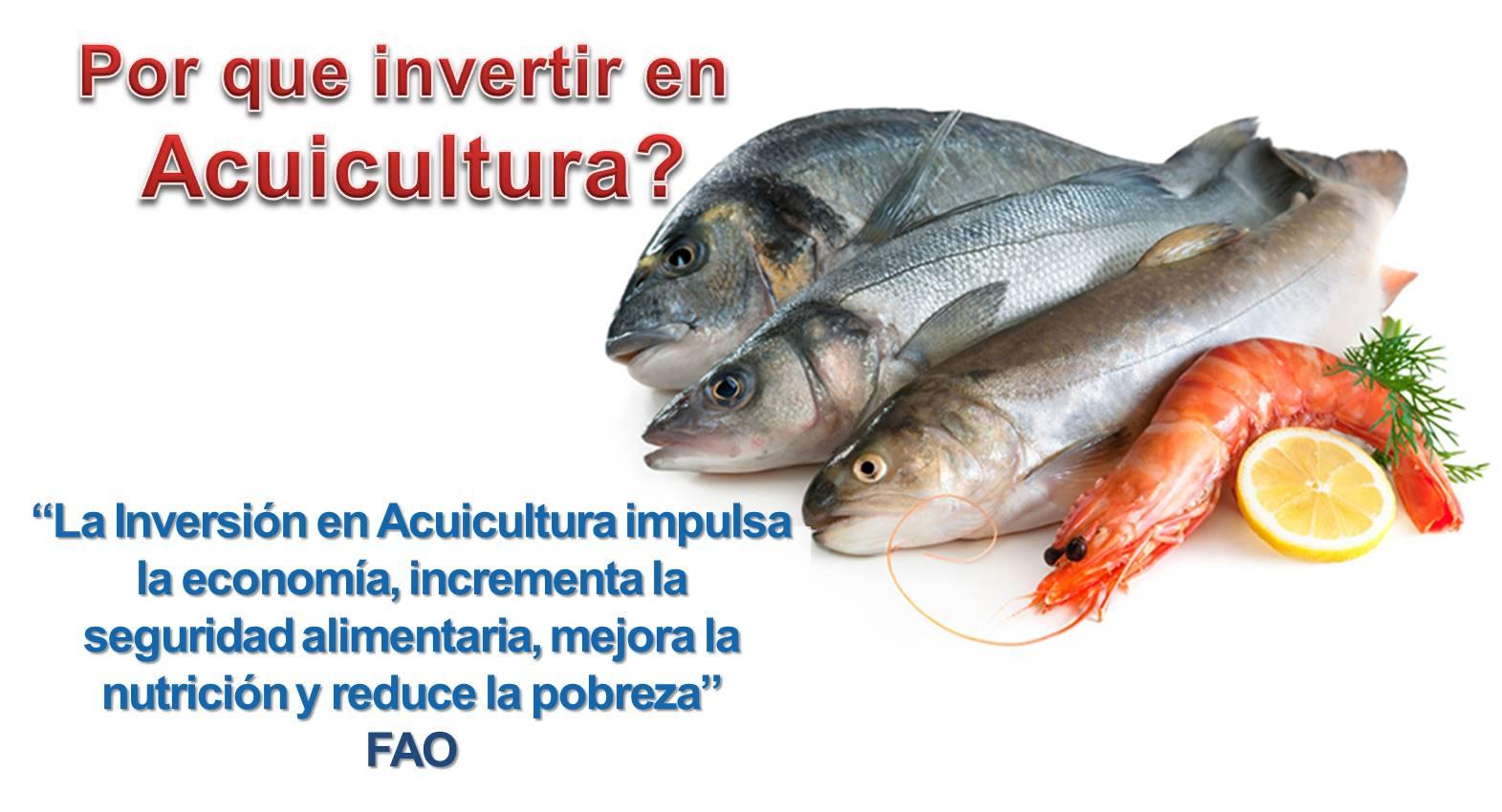 Acuicultura per la pesca y la acuicultura sostenibles for Como criar peces para consumo humano