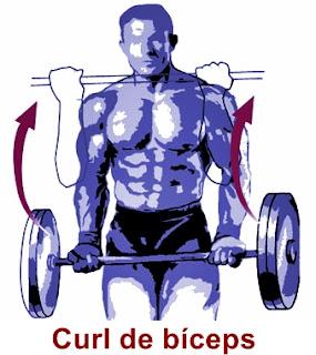 curl de bíceps ejecutado de forma correcta adecuada