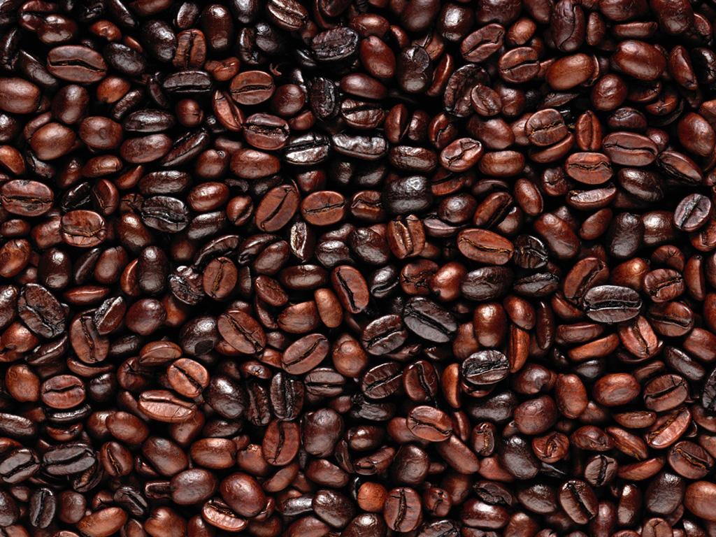 Image result for biji kopi Jawa