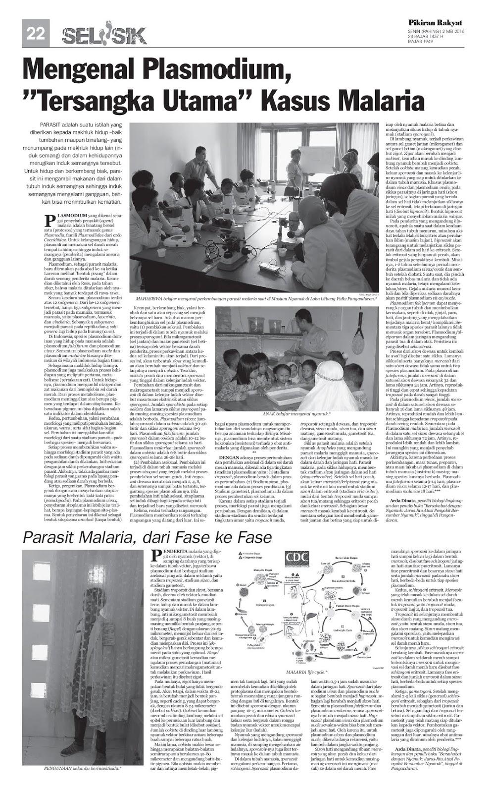 """Mengenal Plasmodium, """"Tersangka Utama"""" Kasus Malaria & Parasit Malaria, dari Fase ke Fase"""
