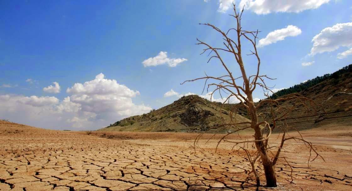 Desertificacion y biologia de los ecosistemas
