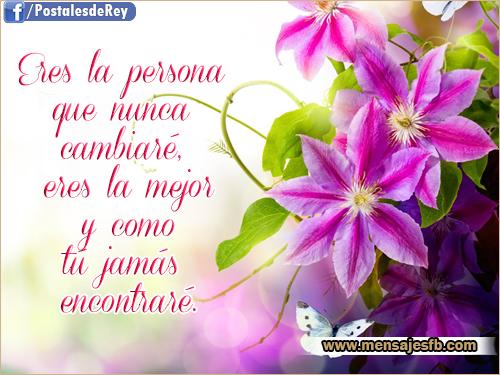 Postales Bonitas De Flores Mensajes Para Amor Postales Tarjetas
