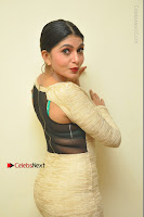 Actress Pooja Roshan Stills in Golden Short Dress at Box Movie Audio Launch  0120.JPG