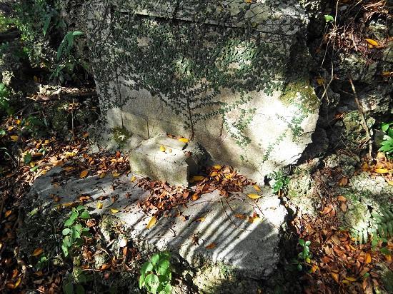 クワギブク嶽(金満の杜)の写真