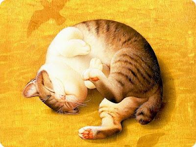 Кот спит. Картина Мурамацу