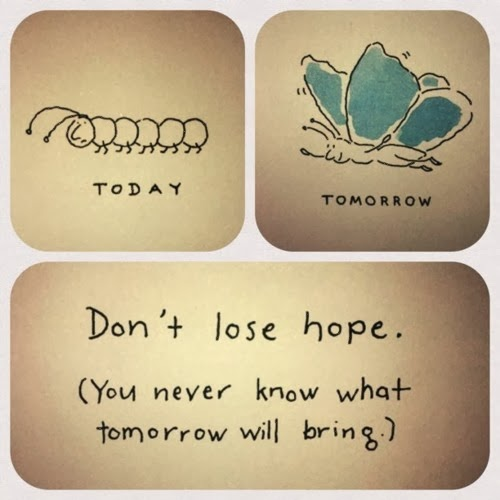 Inspirational Quote - Butterfly Don't Lose Hope You Never Know What Tomorrow Will Bring- Friday Frivolity via Devastate Boredom -- Encouraging Quotes and Printables to Re-Motivate Your New Years Resolutions!