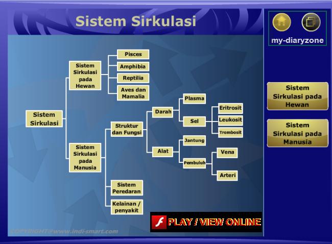 file swf sistem sirkulasi darah, sirkulasi pada manusia, sirkulasi pada hewan