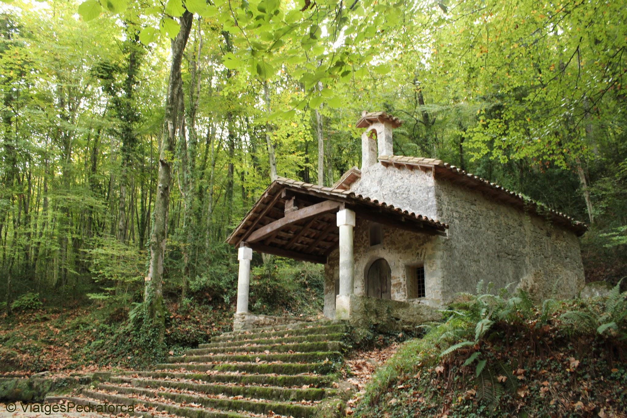 Parc natural de la Zona Volcànica de la Garrotxa, fagedes, colors de tardor, senderisme per Catalunya