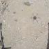 Tahrir Syam Tembak Jatuh Drone Syiah Hizbullah di Suriah