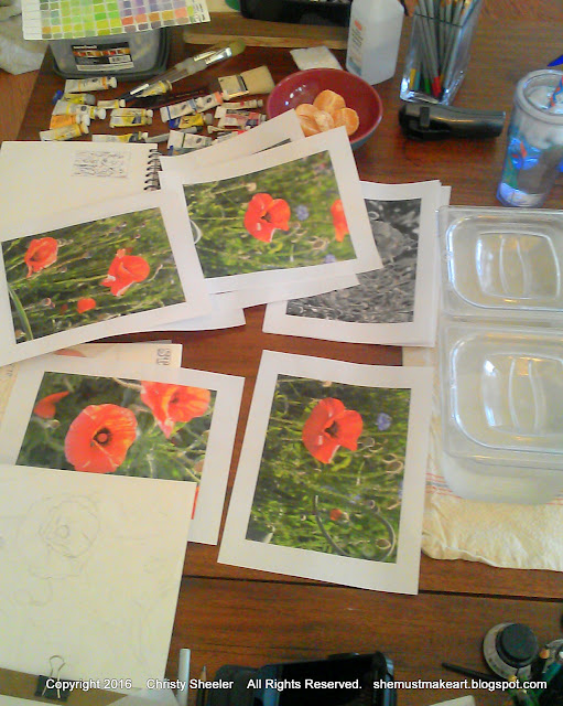 poppies art reference photos planning process art studio